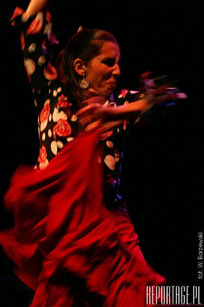 Anna villacampa y del flamenco (5).jpg